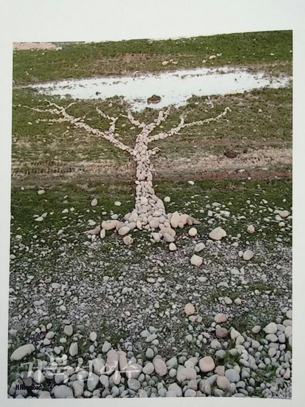 ⧍압돌하미드 누루오바디 '3 Tree' Ⓒ이기자